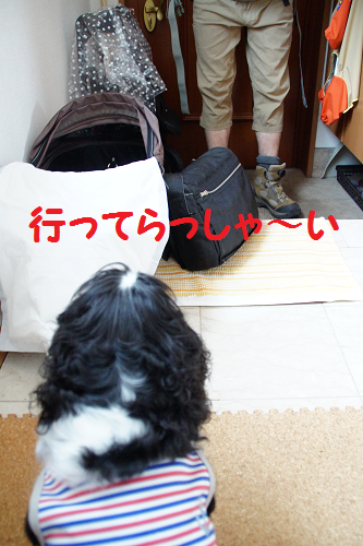 20140812153050a80.png