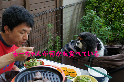 20140819163306015.png