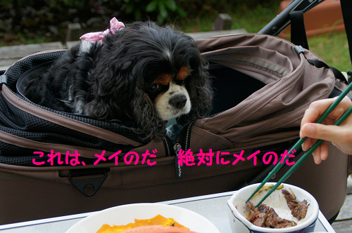 201408191633064b4.png