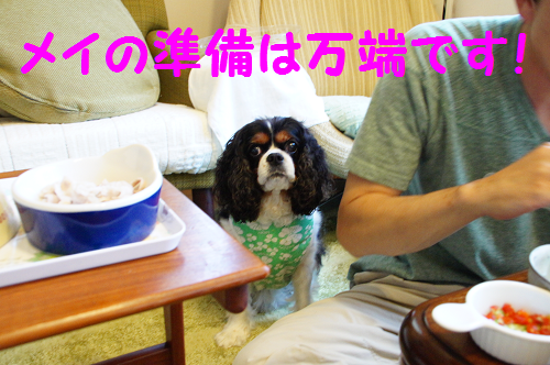 20140826175426b56.png