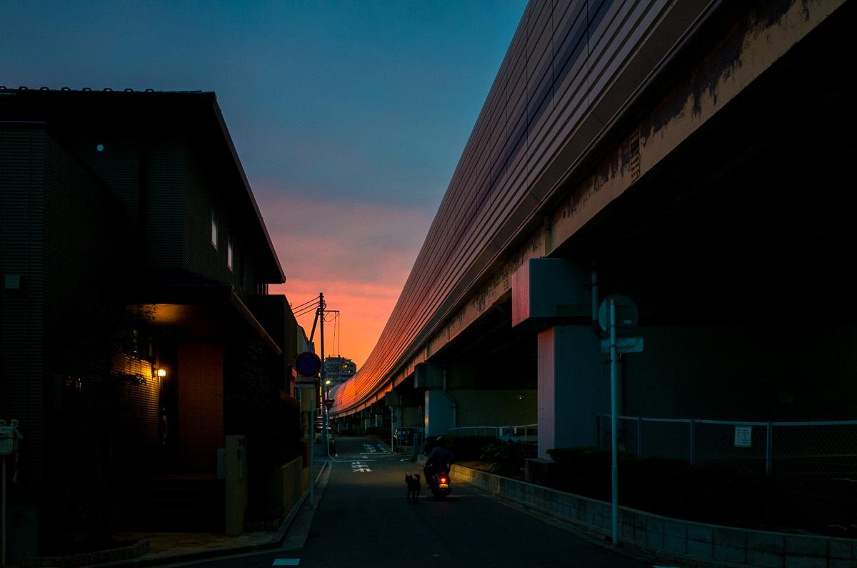 141010船橋 (2 - 1)