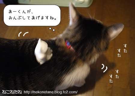猫助さんをおんぶするあーく氏