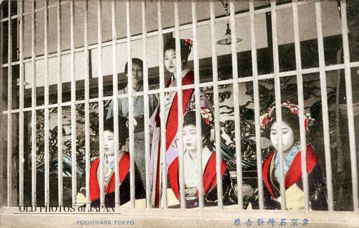 吉原の飾り窓の女性たち