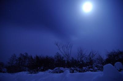 th_有明の雪