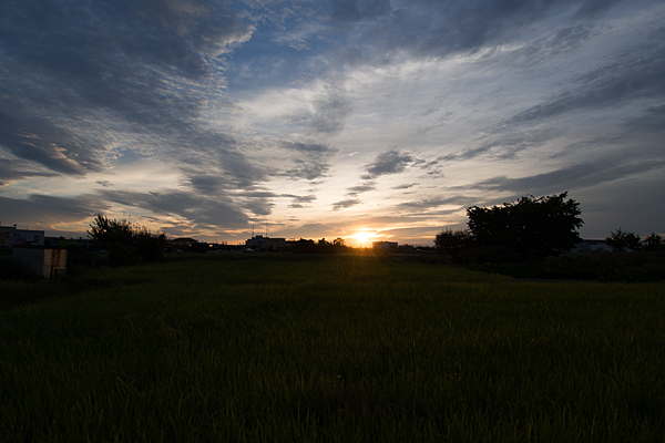 夕方写真-3