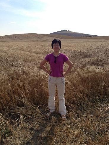 デュラム小麦