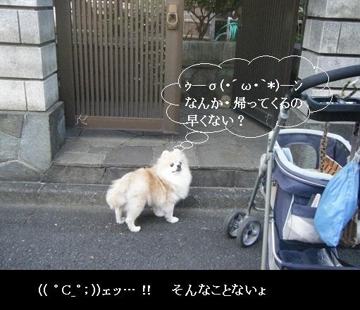 DSCF6777.jpg