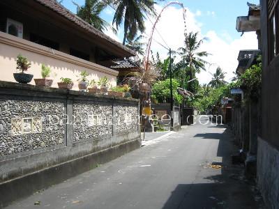 バリ島チュルク村1