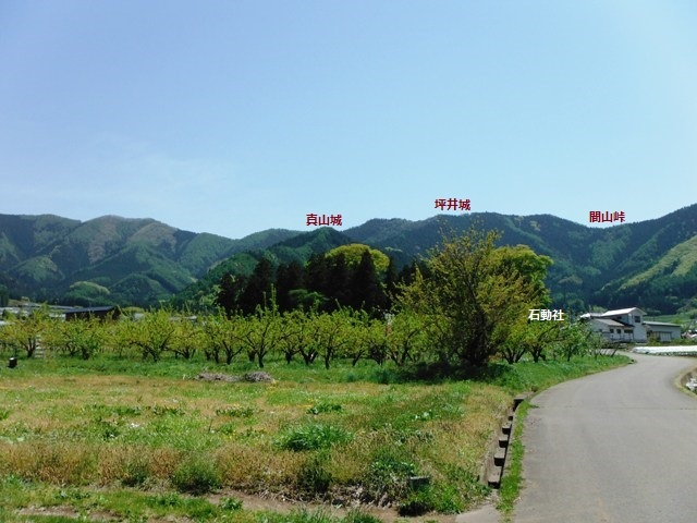 間山館(中野市) (22)