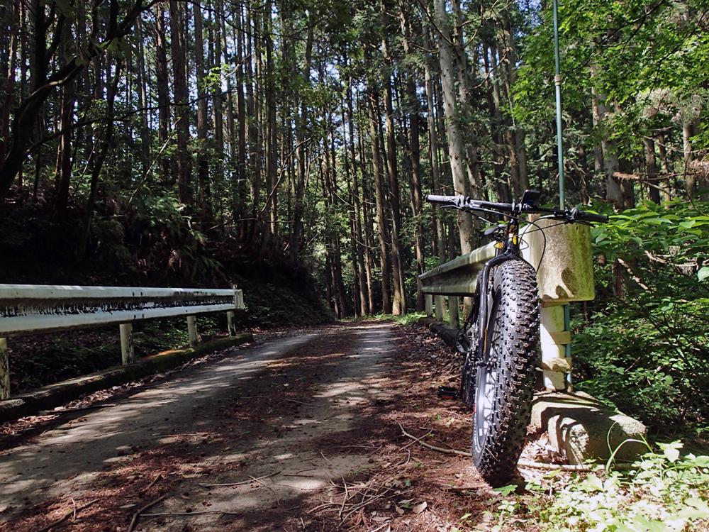 ファットバイクで初めてのトレイル