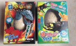 恐竜カブトムシ1