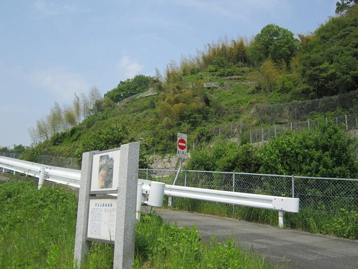 天王山断層露頭