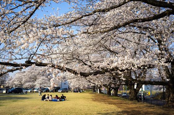 inariyama20141.jpg