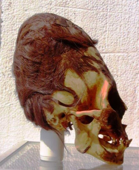 Elongated-Skull-Peru-Red-Ha.jpg