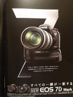 DSC06644.jpg