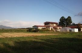 Watona