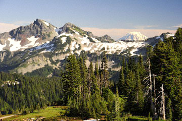blog 102 Mt. Adams, WA_DSC9803-7.30.14.(1).jpg
