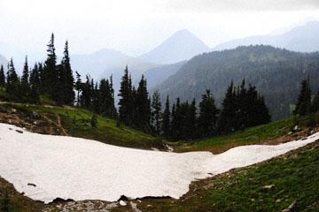 blog 116 Mt. Rainier, Skyline Trail, Flower Meadow, WA_DSC1768-8.6.14.(6).jpg